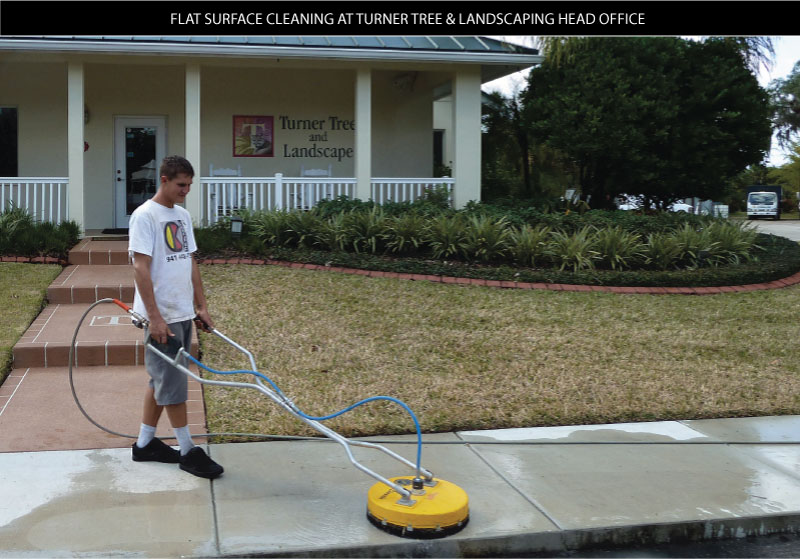 sidewalk pressure cleaning at turner tree and landscaping