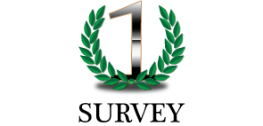 Roof Cleaning Survey