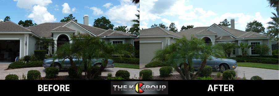 Roof Cleaning in Palmetto